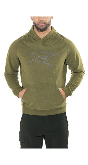 Arc'teryx Archaeopteryx sweater Heren olijf